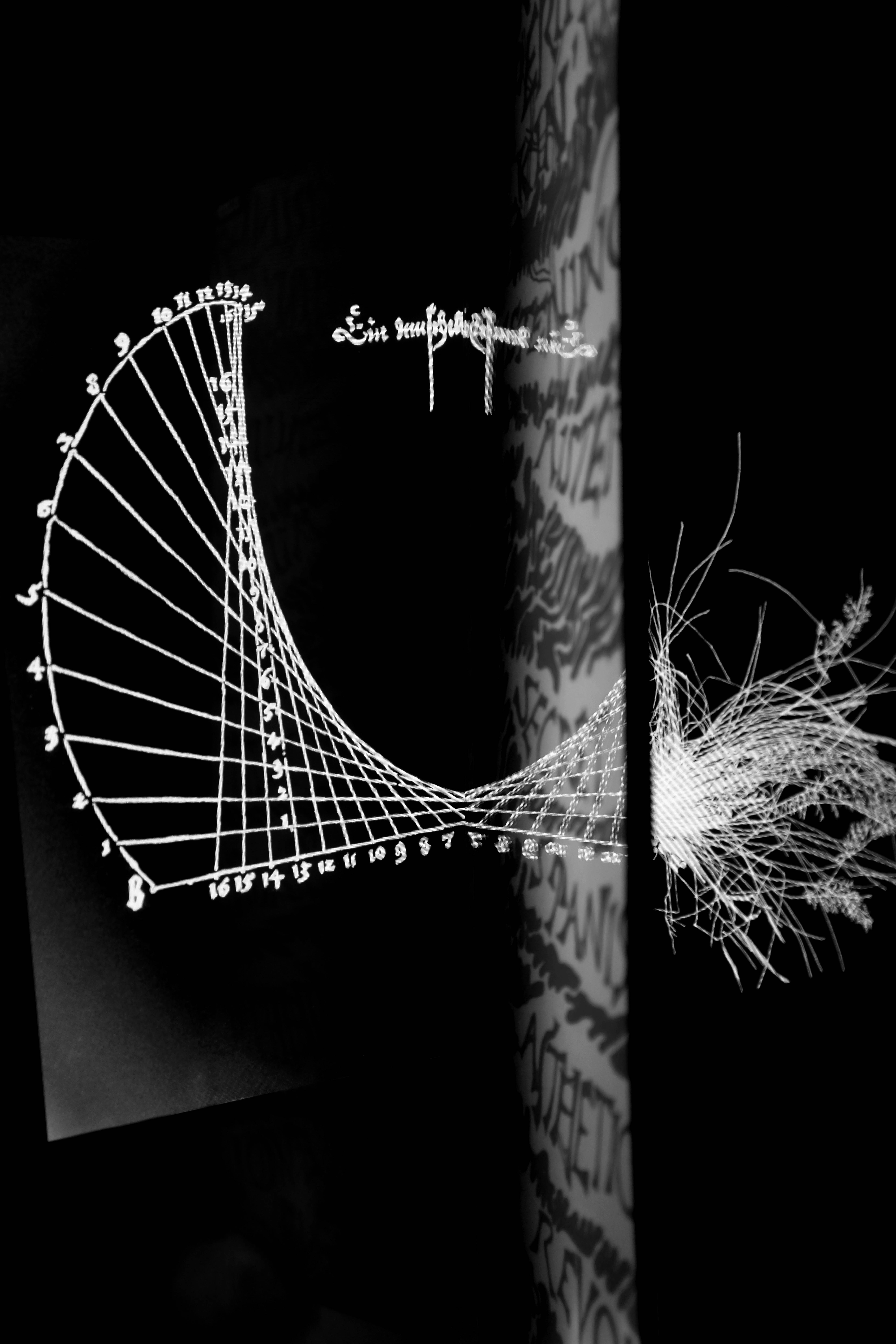 Katharina Karrenberg, Reflectography - DÜRER NET_B 17_0359_7782, 2014