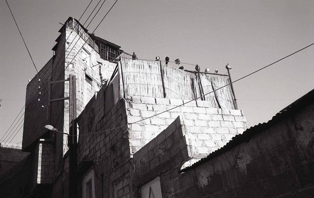 Mohamad Al Roumi, El Habit, 2010