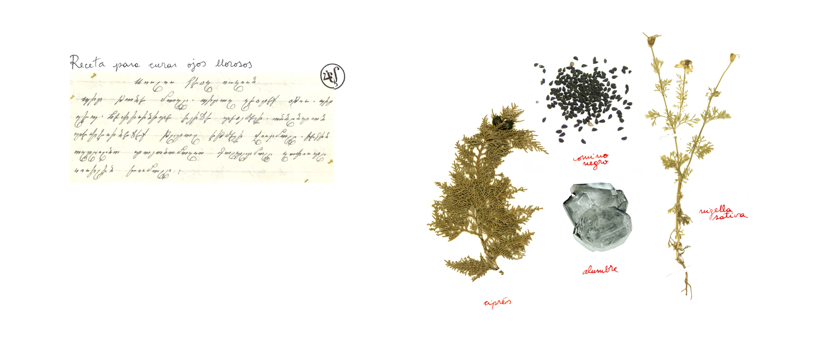Silvina Der-Meguerditchian, Treasures, page 10, 2014